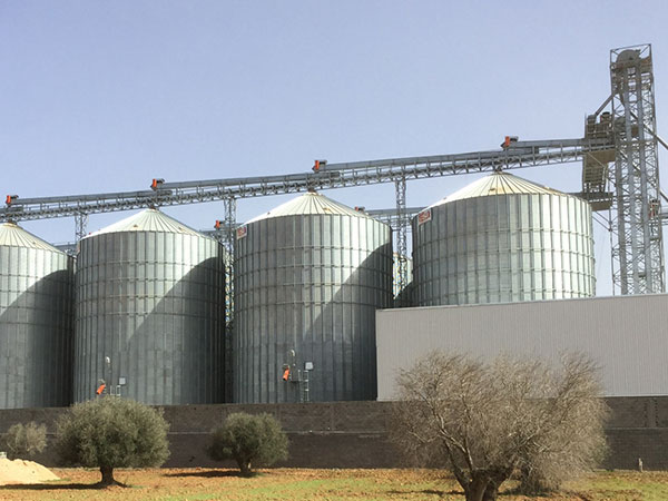 Large Grain Silos 1000ton Capacity